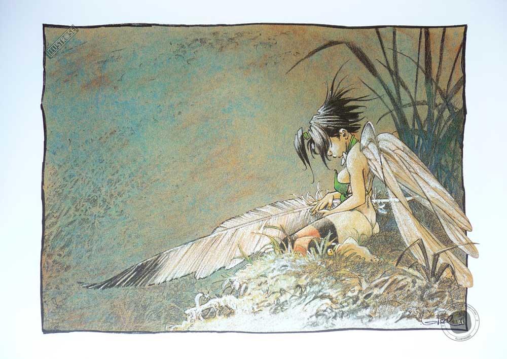 Affiche bd Peter Pan Loisel 'Clochette' songe d'une nuit d'été' - Illustrose