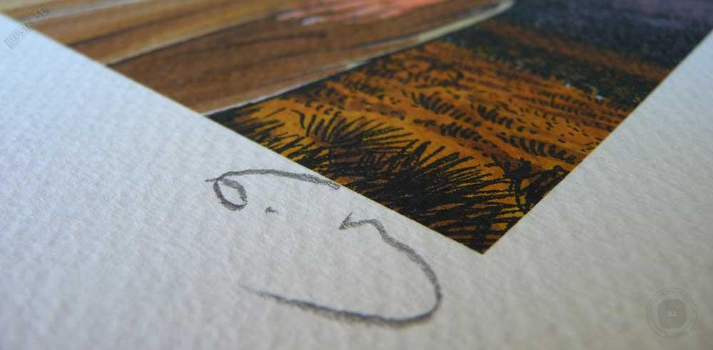 Impression aux encres signée, numérotée, limitée BD Les passagers du vent le comptoir de Juda de François Bourgeon - Illustrose