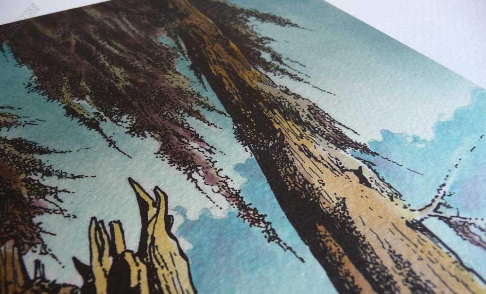 Affiche d'art encadrée BD Les passagers du vent La petite fille bois caïman de François Bourgeon - Illustrose