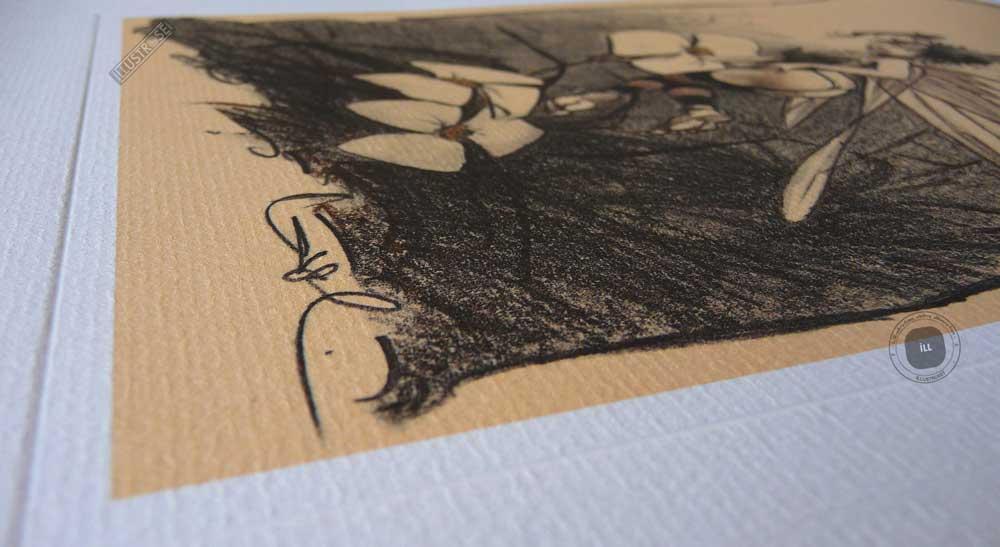 Affiche édition d'art BD Peter Pan 'Clochette, fée n°6' de Régis Loisel - Illustrose
